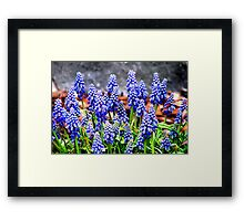 In to Blue Framed Print