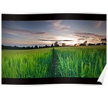 Scottish Borders sunset over crop Poster