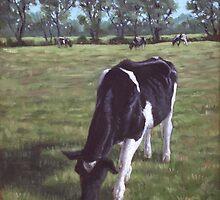 Cow in field at Throop,UK by martyee