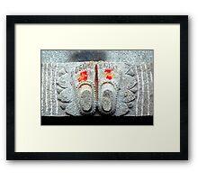 Vermilion Framed Print