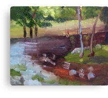 Landscape lesson Canvas Print