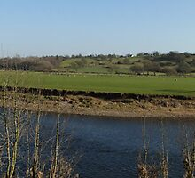 River Ribble at Ribchester by CiaoBella