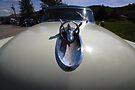 Buick Rocket by John Schneider