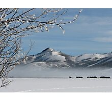 Walton Ranch in Winter Photographic Print