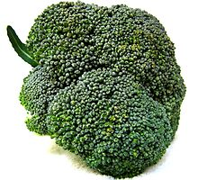 Broccolli by Gloria Abbey