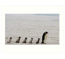 Emperor Penguins at Snowhill Island, Antarctica Art Print