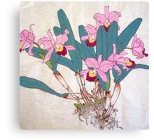 Orchids with roots  Canvas Print