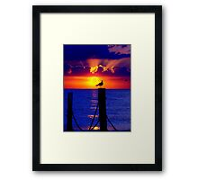 Front Row Seat At Sunset Framed Print