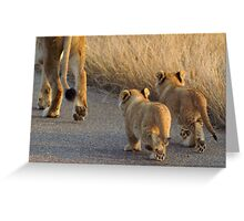 Following mom - Kruger National Park Greeting Card