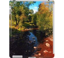 River scene at the end of summer iPad Case/Skin