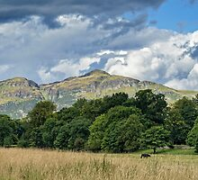 Ochil Hills by Jeremy Lavender Photography