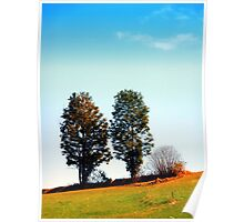 Twin trees and a bush Poster