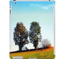 Twin trees and a bush iPad Case/Skin
