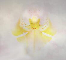 Angel by RosiLorz
