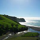 New Zealand Seascape by Alison Murphy
