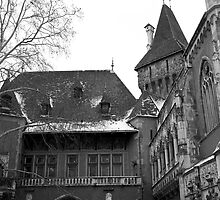 Vajdahunyad Castle, Budapest by Rodney Johnson