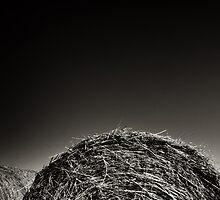 Bales by Jonathan Garrett