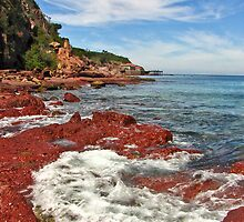 Merimbula on the Rocks by SuzieCheree