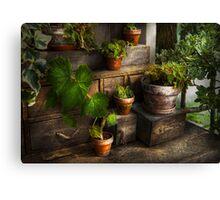 Plants - A summers soak  Canvas Print