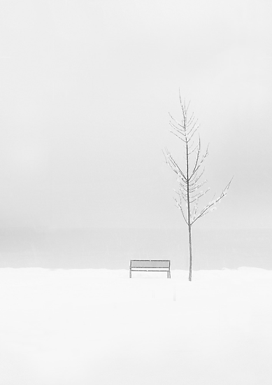 A whiter shade of pale by John Poon