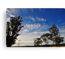 Streaks Over the Gums Canvas Print