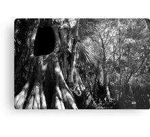 Cypress II Metal Print