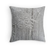 February Snow Throw Pillow