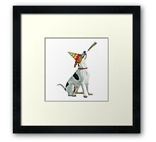 American Foxhound Birthday Framed Print