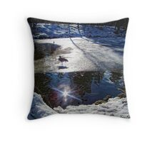 Sunshine in My Soul Throw Pillow