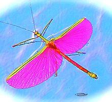 "Plasma ""Phasma"" ~ The Winged Phantom! by NICK COBURN PHILLIPS"