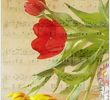 Music for Spring by Brenda Boisvert