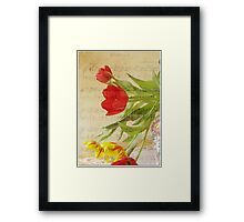 Music for Spring Framed Print