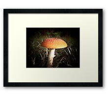 Amanita Muscaria Framed Print