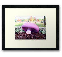 Blewit Beauty Framed Print