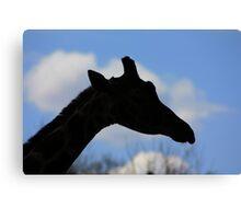 Giraffe Silhouette Canvas Print