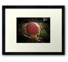 Pretty Fly For A Fungi Framed Print