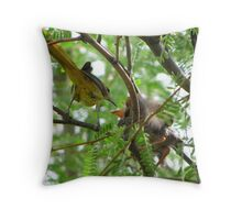 Hooded Orioles ~ Mother feeding Baby Throw Pillow