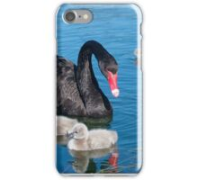 Swan with 5 cygnets iPhone Case/Skin