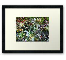 Symbiotic Harmony Framed Print