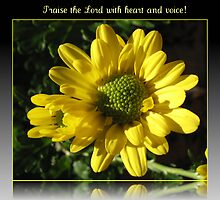 Praise the Lord with heart and voice! Psalm 117 by BlueMoonRose