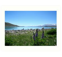 Lake Tekapo Art Print