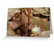 Beauty Bells Greeting Card