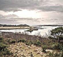 Castle Stalker by a Couple of Photos