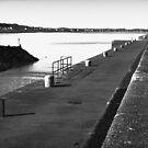Ballyhalbert Harbour by Chris Cardwell