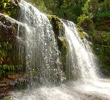 Liffey Falls by Philip Greenwood
