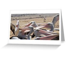 Frenzy: San Remo, Victoria Greeting Card