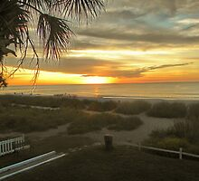 Mrytle Beach SC by sshuler65