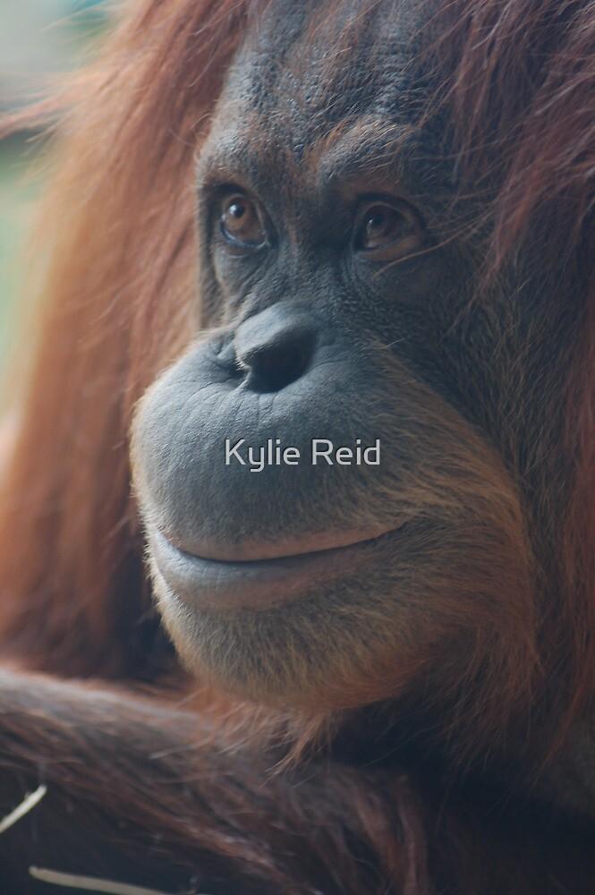 Smile by Kylie Reid
