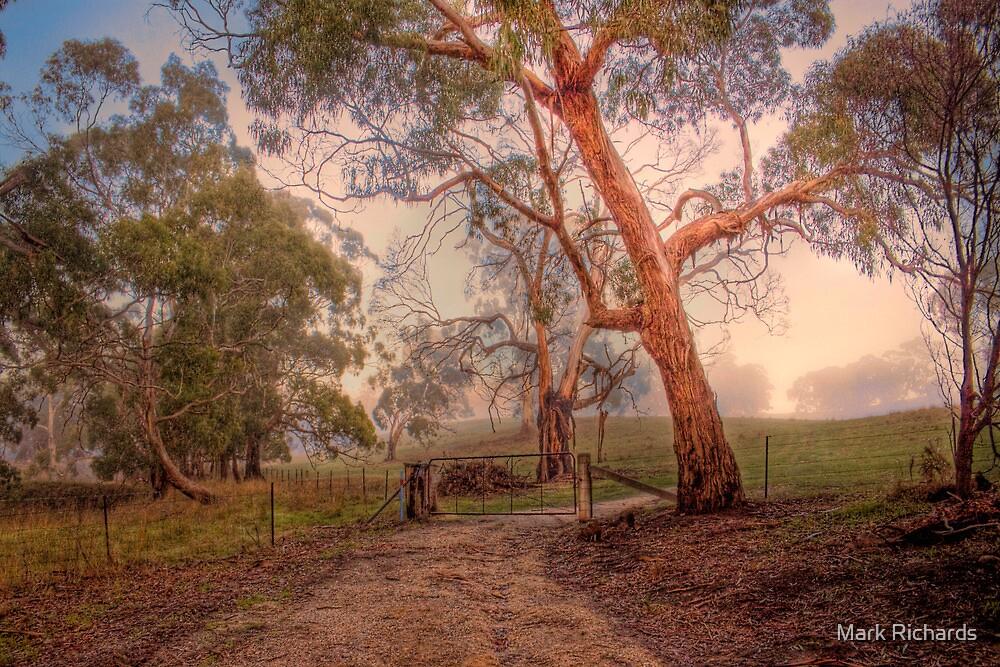 Misty Hills - Woodside, Adelaide Hills, South Australia by Mark Richards