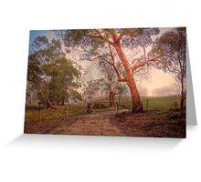 Misty Hills - Woodside, Adelaide Hills, South Australia Greeting Card